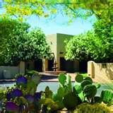 Images of Inpatient Addiction Treatment Tucson